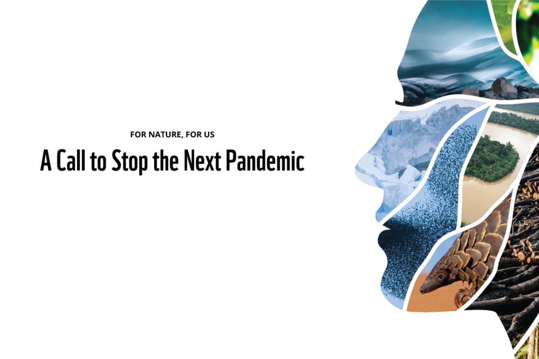 WWF Pandemics